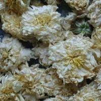 Цзюй Хуа (Хризантема)
